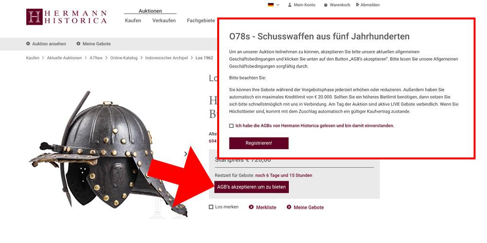 Schritt2-Onlinegebot-ok2